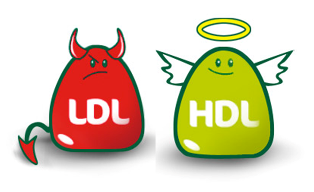 LDL - Bad HDL - Goof